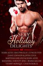 Sexy Holiday Delights Anthology