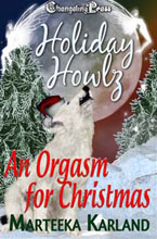 An Orgasm For Christmas
